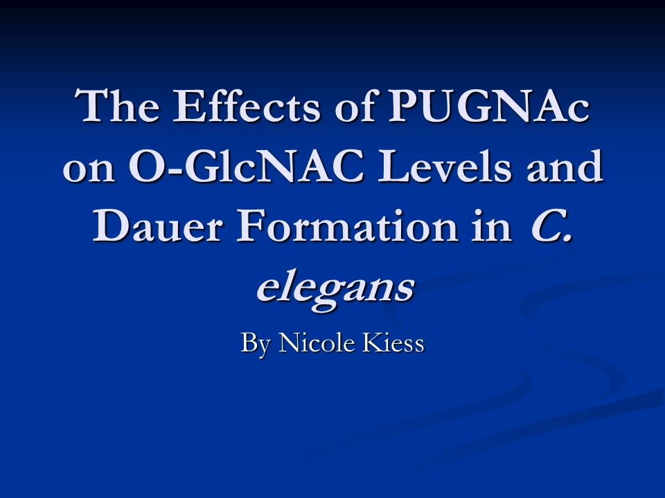 The Effects of PUGNAc on O-GlcNAC Levels and Dauer Formation in C