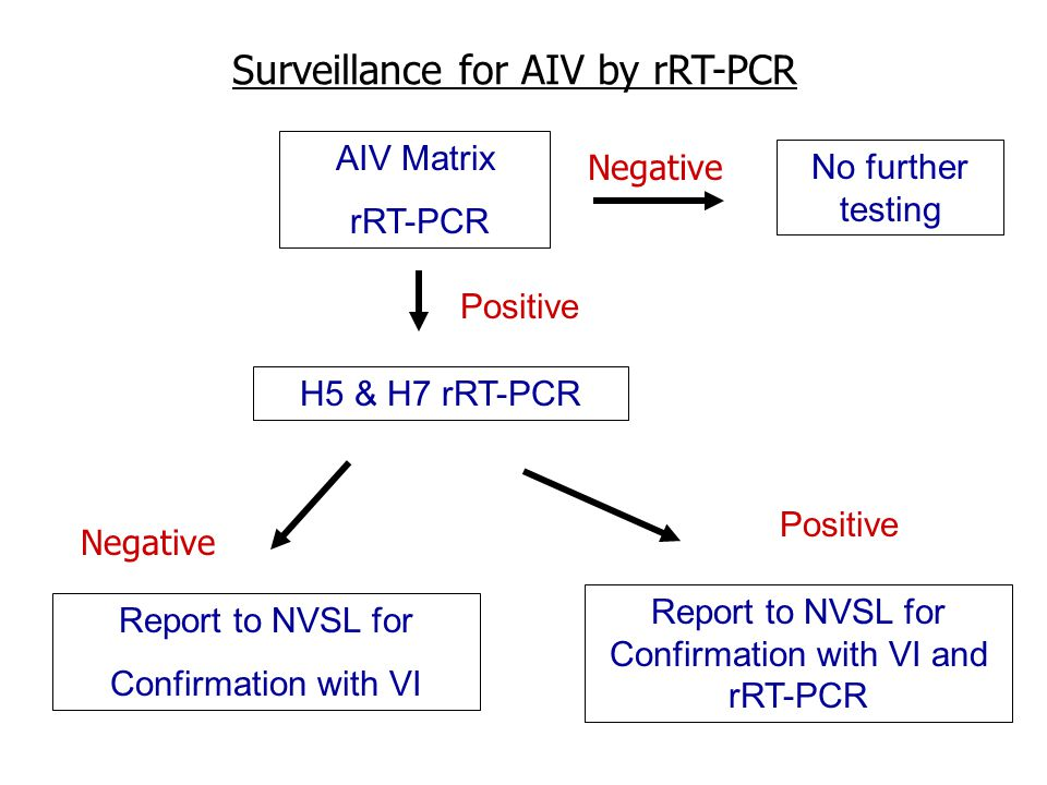 Surveillance for AIV by rRT-PCR