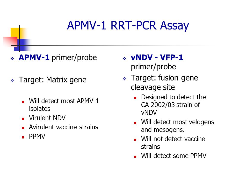 APMV-1 RRT-PCR Assay APMV-1 primer/probe Target: Matrix gene