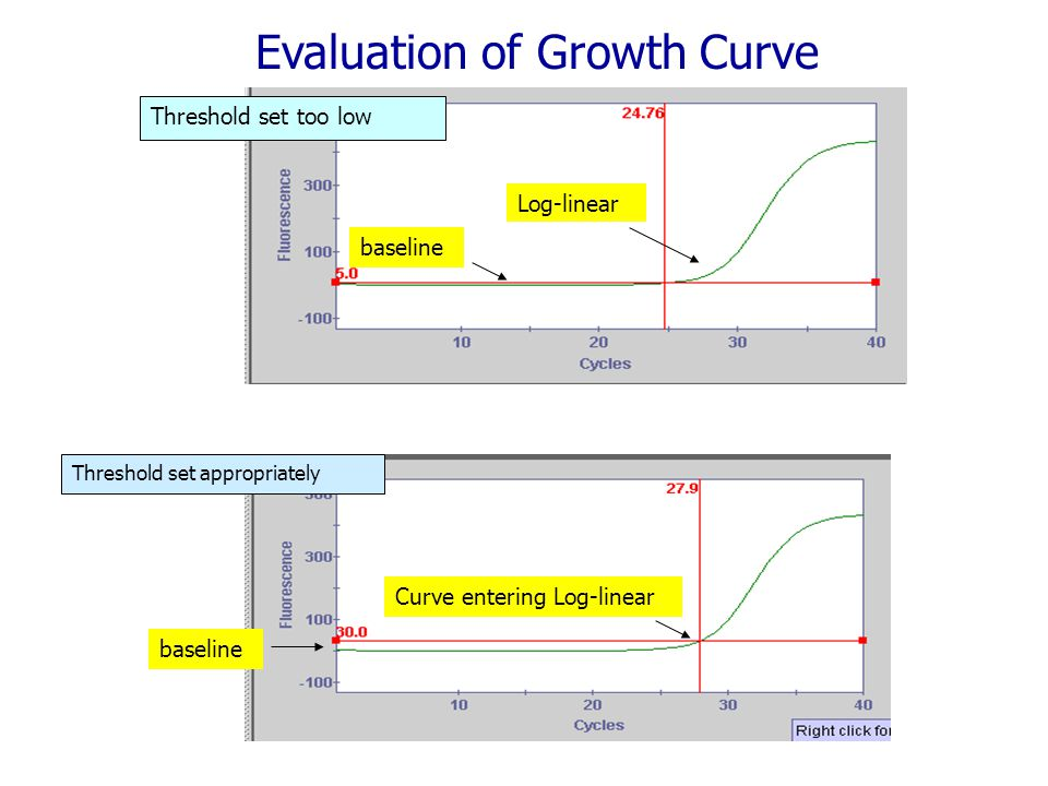 Evaluation of Growth Curve