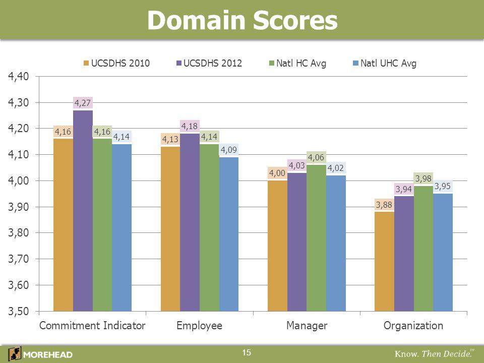 Domain Scores