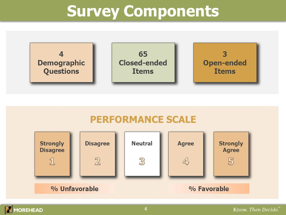 Survey Components PERFORMANCE SCALE 1 2 3 4 5 4 Demographic Questions