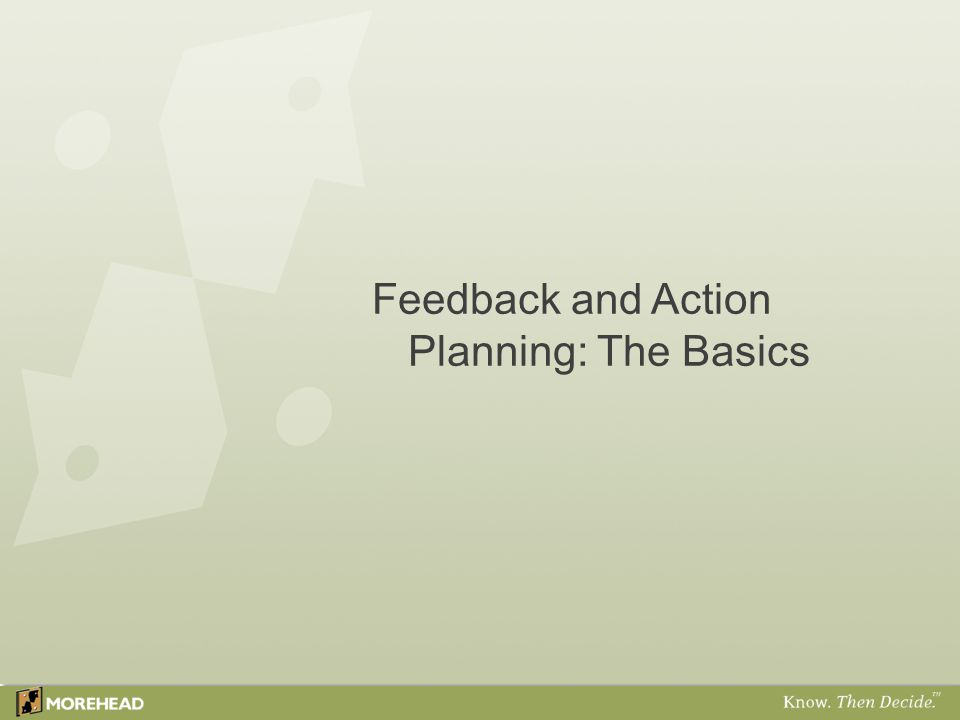 Feedback and Action Planning: The Basics