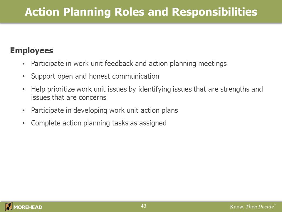 Action Planning Roles and Responsibilities