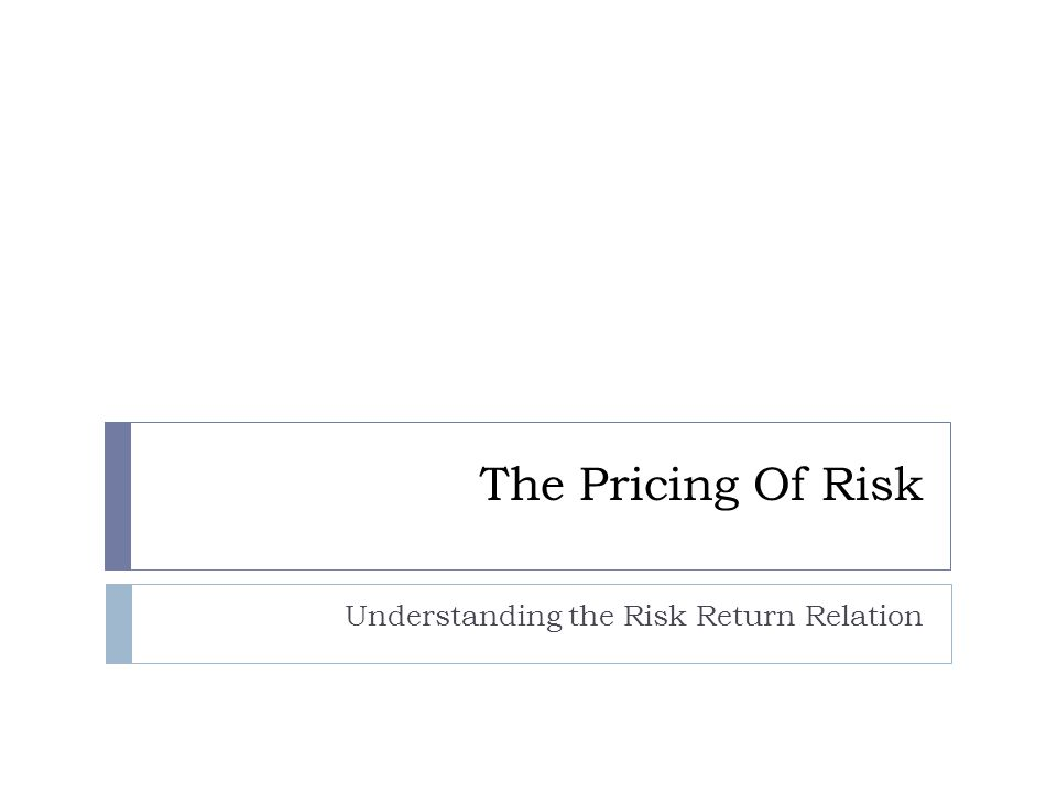 Understanding the Risk Return Relation