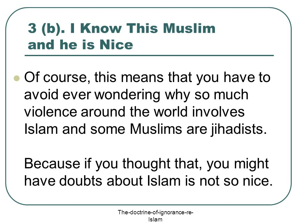 3 (b). I Know This Muslim and he is Nice