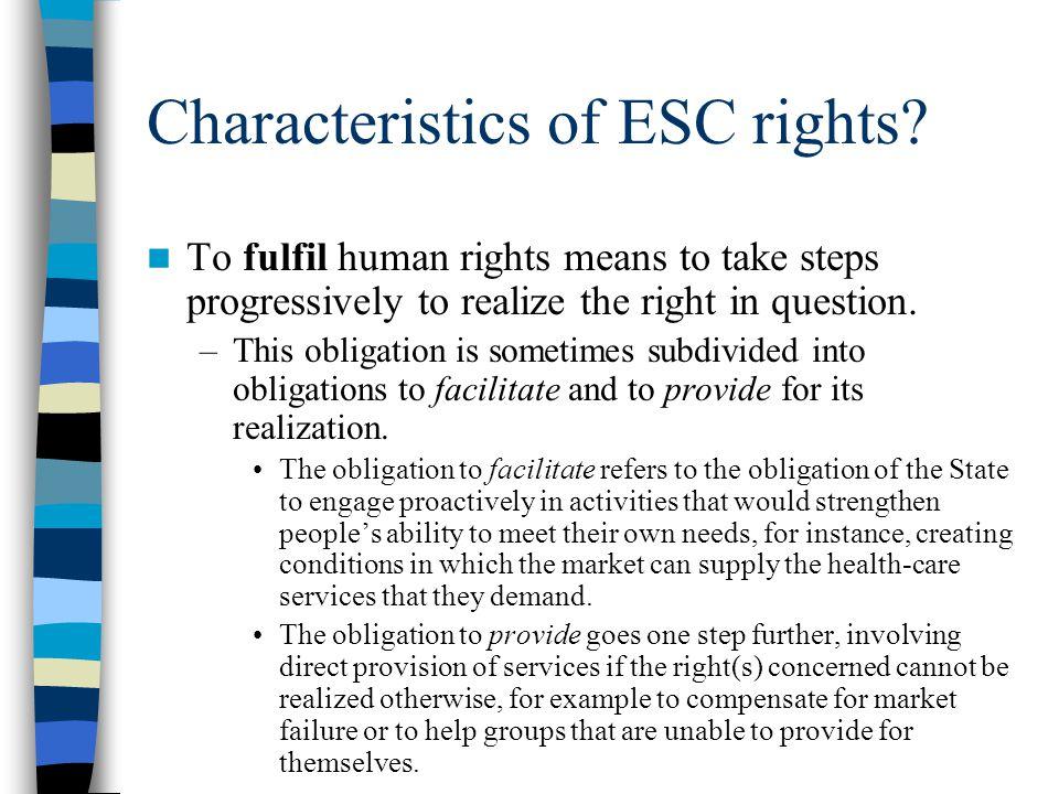 Characteristics of ESC rights