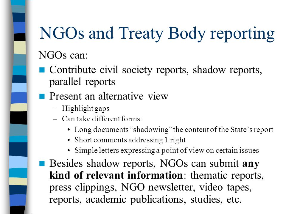 NGOs and Treaty Body reporting