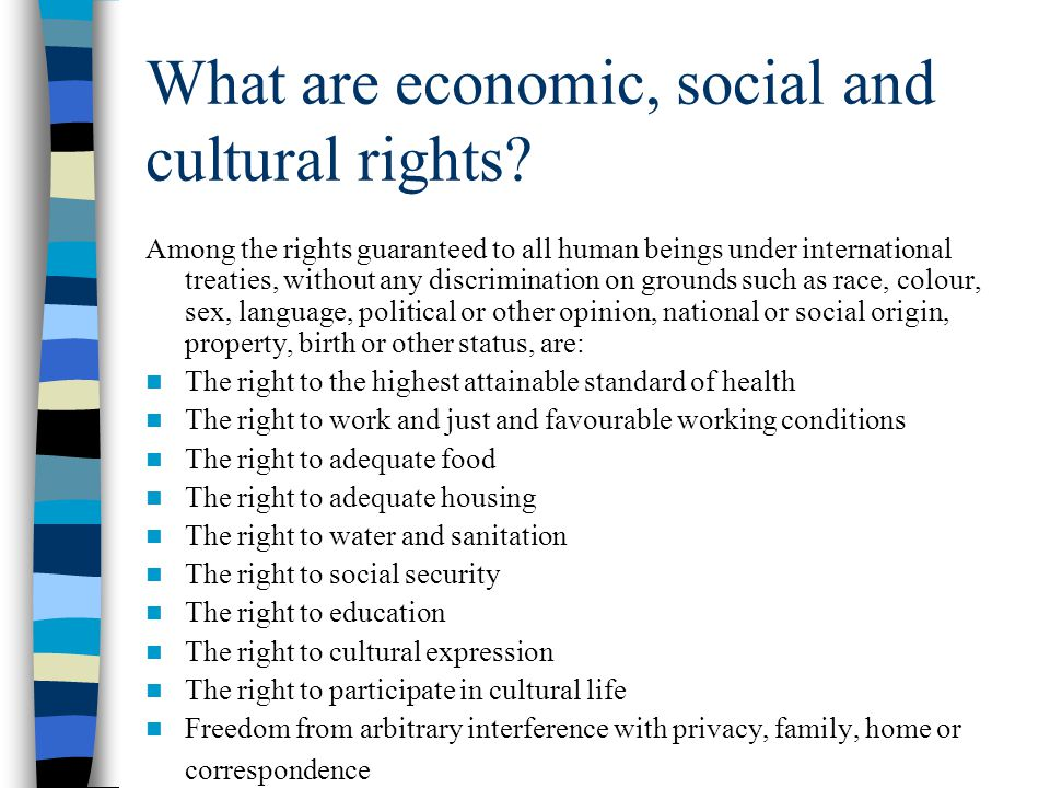 What are economic, social and cultural rights