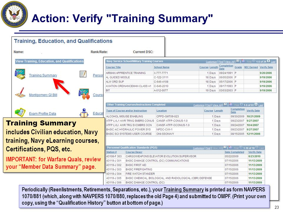 Action: Verify Training Summary