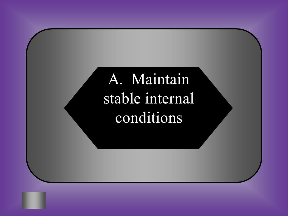 A. Maintain stable internal conditions