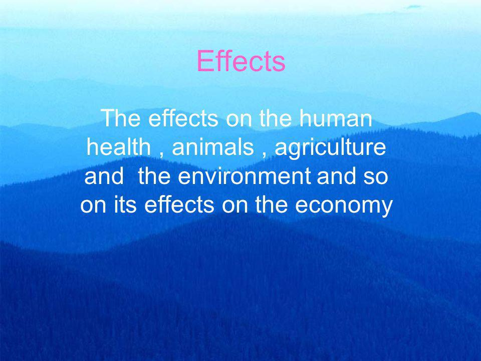 Effects The effects on the human health , animals , agriculture and the environment and so on its effects on the economy.