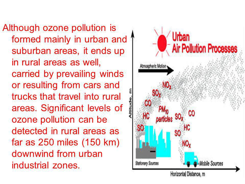 Although ozone pollution is formed mainly in urban and suburban areas, it ends up in rural areas as well, carried by prevailing winds or resulting from cars and trucks that travel into rural areas.