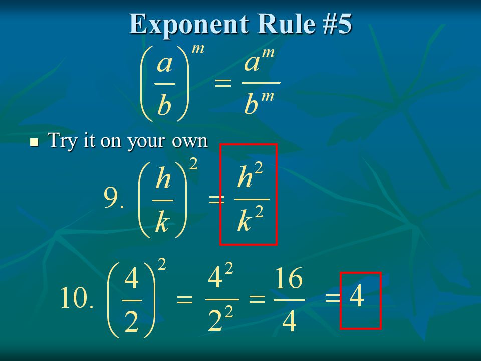 Exponent Rule #5 Try it on your own