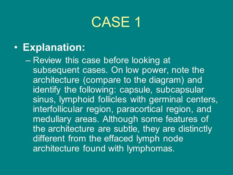 CASE 1 Explanation: