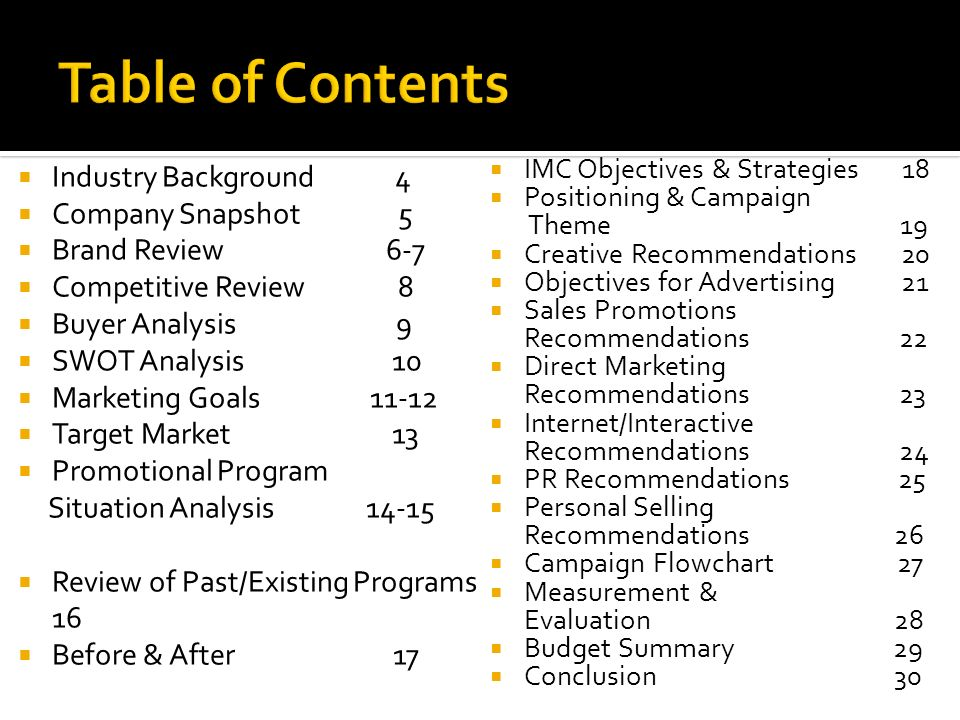 Table of Contents Industry Background 4 Company Snapshot 5