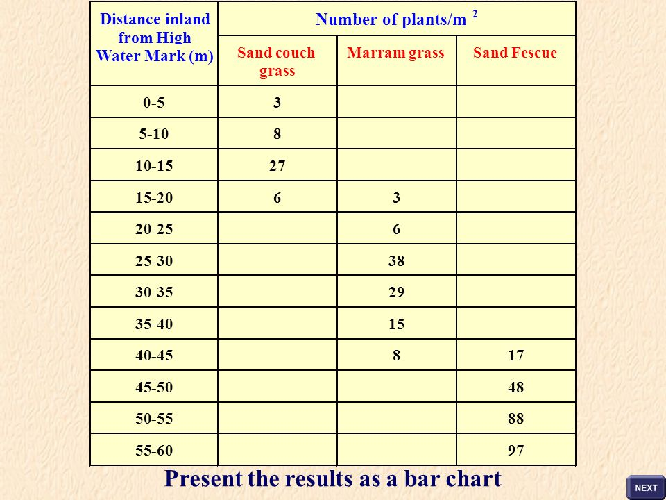 Present the results as a bar chart