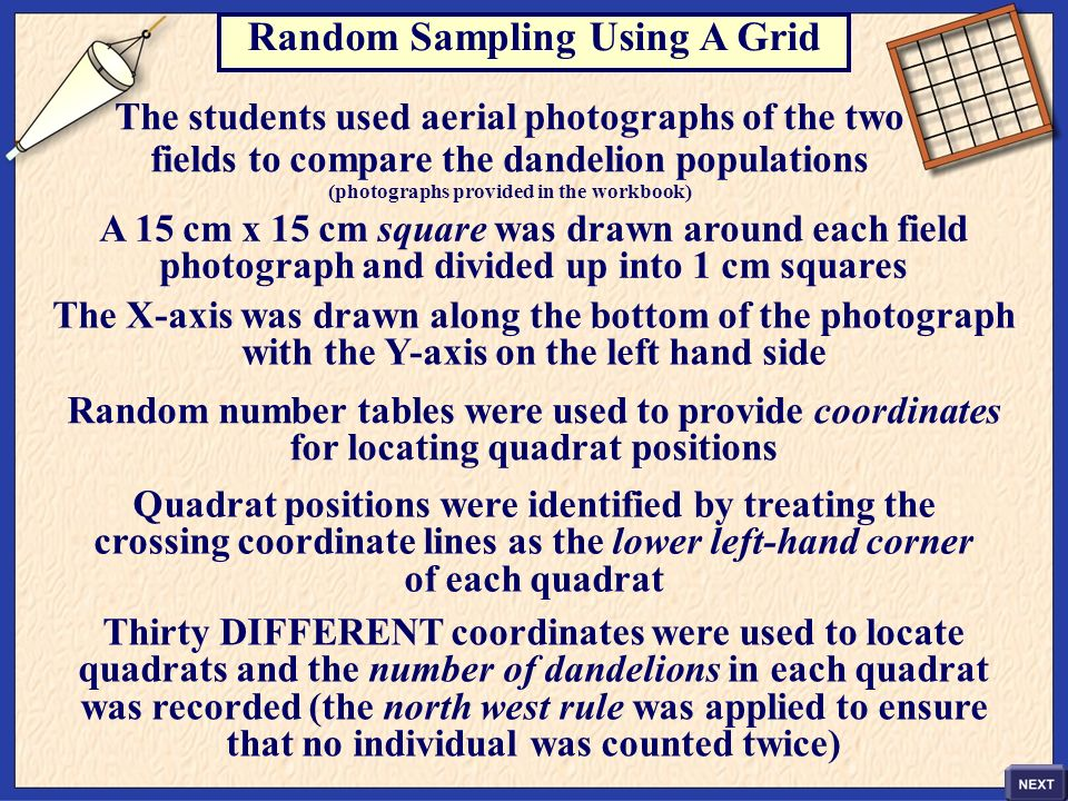 Random Sampling Using A Grid (photographs provided in the workbook)