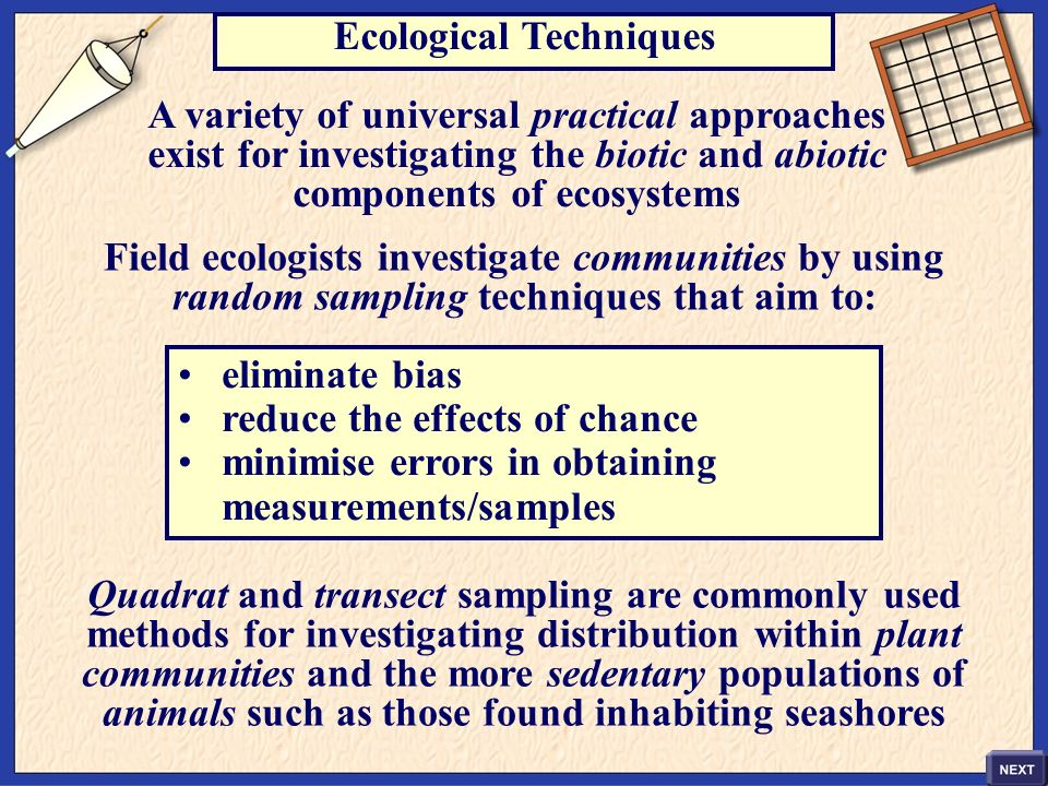 Ecological Techniques A variety of universal practical approaches