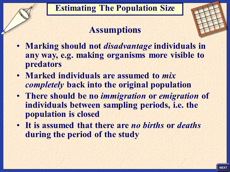 Estimating The Population Size
