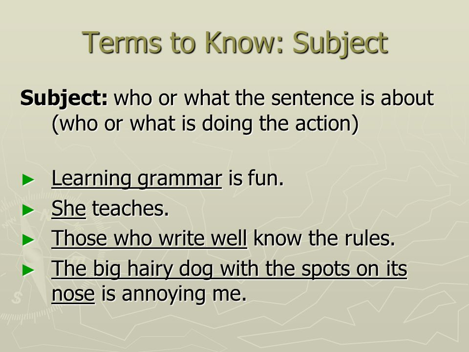 Terms to Know: Subject Subject: who or what the sentence is about (who or what is doing the action)