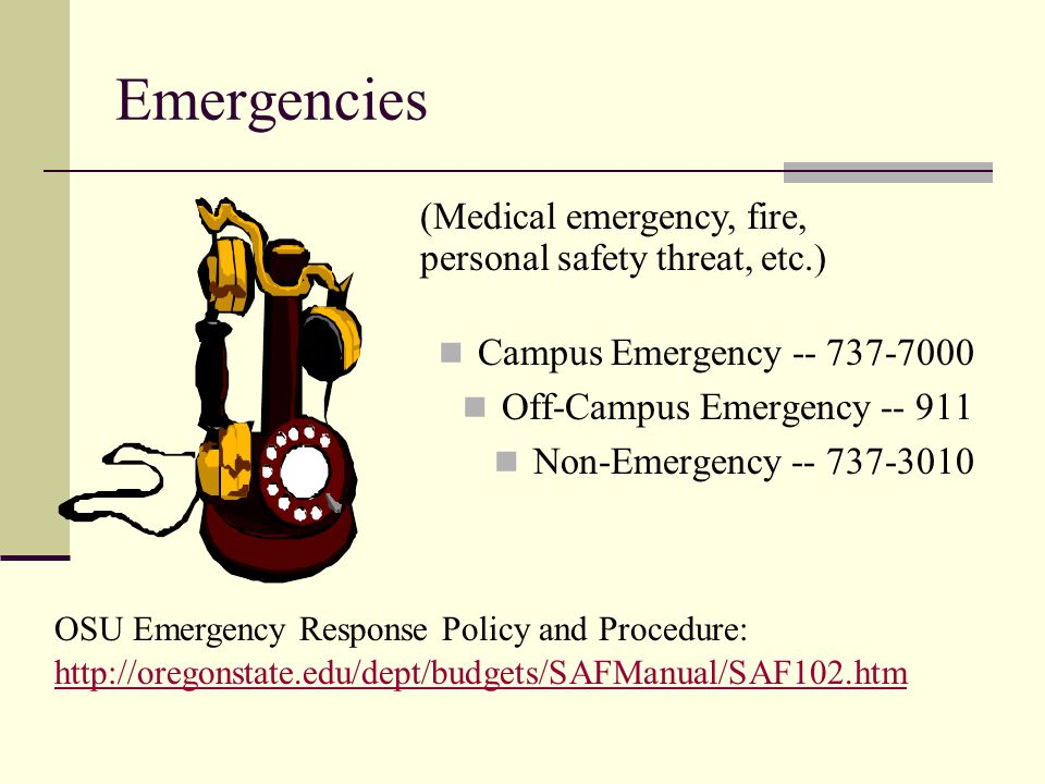 Emergencies (Medical emergency, fire, personal safety threat, etc.)