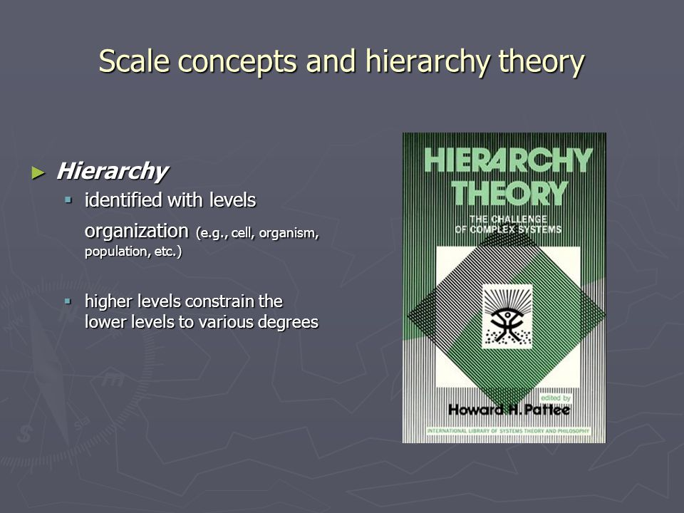 Scale concepts and hierarchy theory