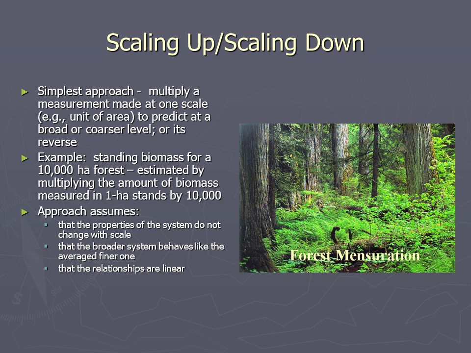 Scaling Up/Scaling Down