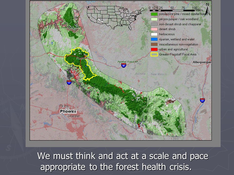 We must move forward at the scale of the greater ecosystem (200,000 to 1,000,000 acres) if we are to prevent the collapse of Arizona's forest ecosystems.