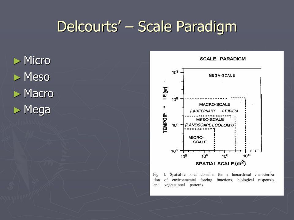 Delcourts' – Scale Paradigm