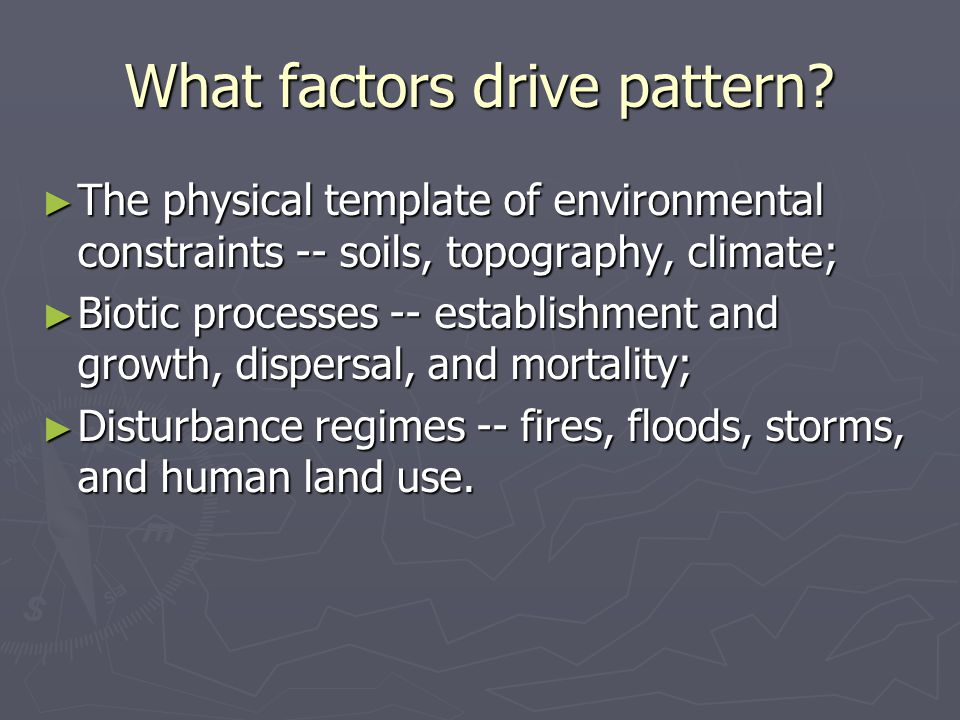 What factors drive pattern