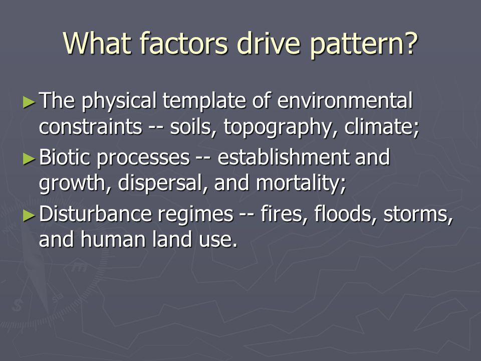 What factors drive pattern