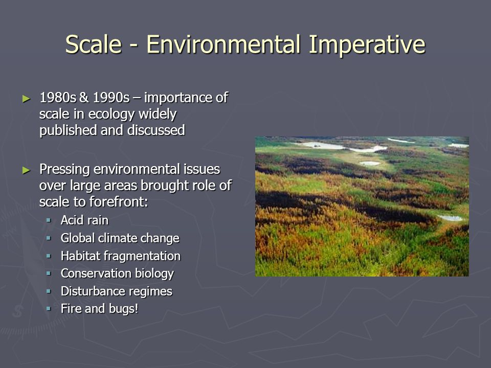 Scale - Environmental Imperative
