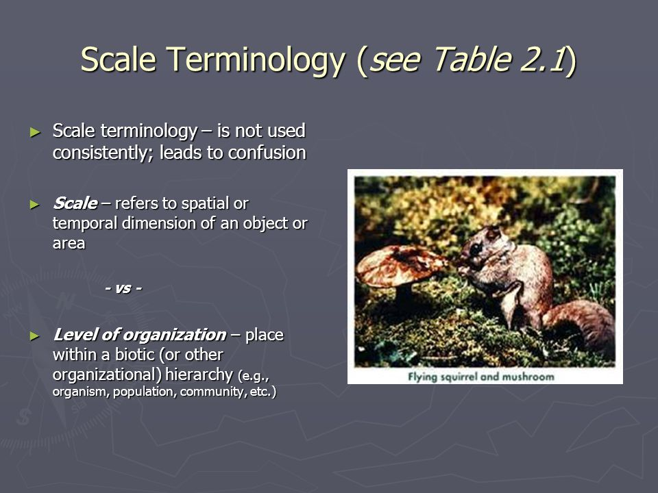 Scale Terminology (see Table 2.1)