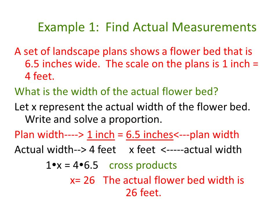 Example 1: Find Actual Measurements