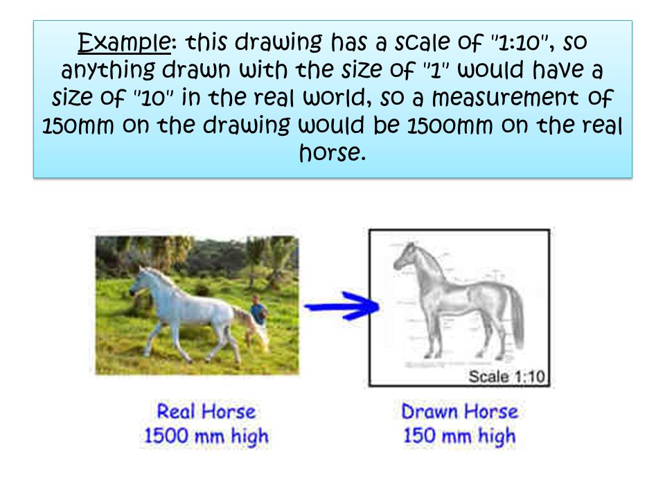 Example: this drawing has a scale of 1:10 , so anything drawn with the size of 1 would have a size of 10 in the real world, so a measurement of 150mm on the drawing would be 1500mm on the real horse.