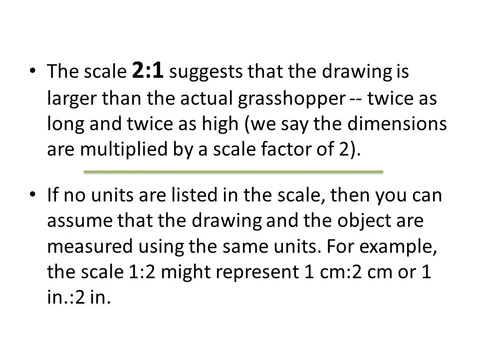 The scale 2:1 suggests that the drawing is larger than the actual grasshopper -- twice as long and twice as high (we say the dimensions are multiplied by a scale factor of 2).