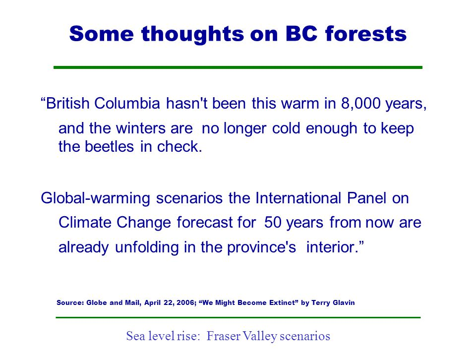 Some thoughts on BC forests