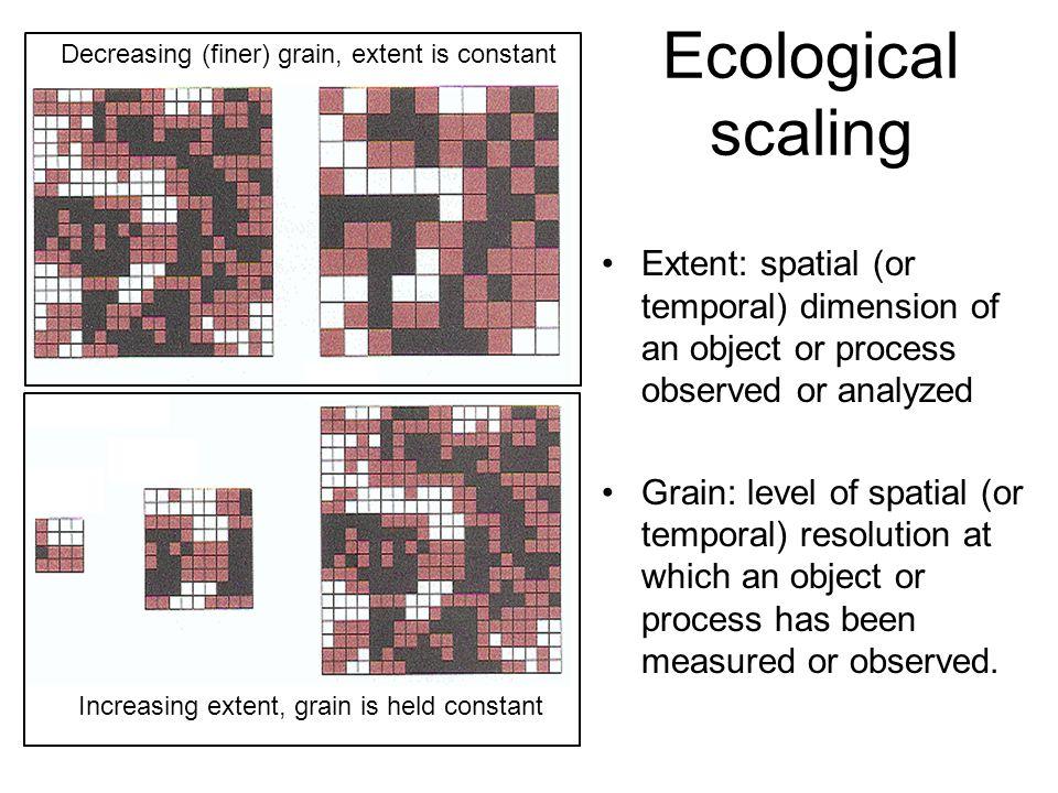 Decreasing (finer) grain, extent is constant