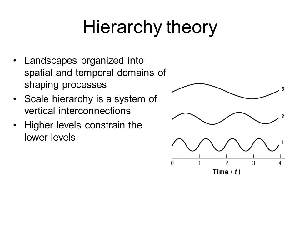 Hierarchy theory Landscapes organized into spatial and temporal domains of shaping processes.