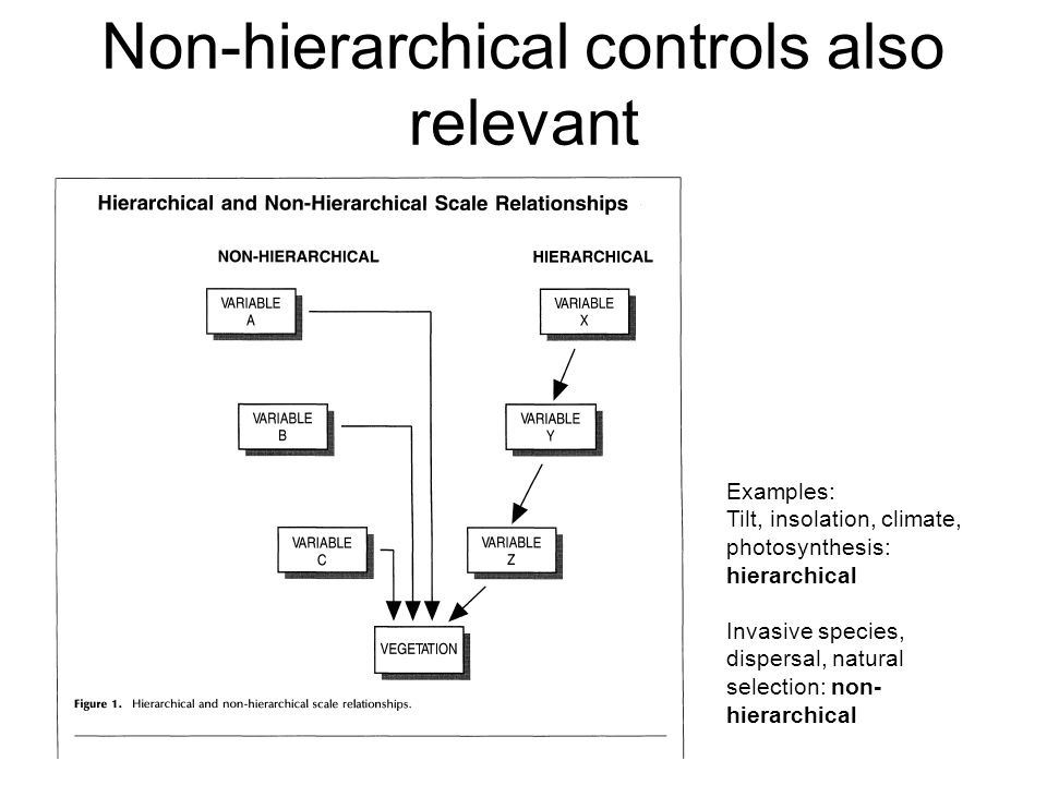 Non-hierarchical controls also relevant