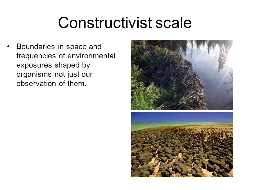 Constructivist scale Boundaries in space and frequencies of environmental exposures shaped by organisms not just our observation of them.