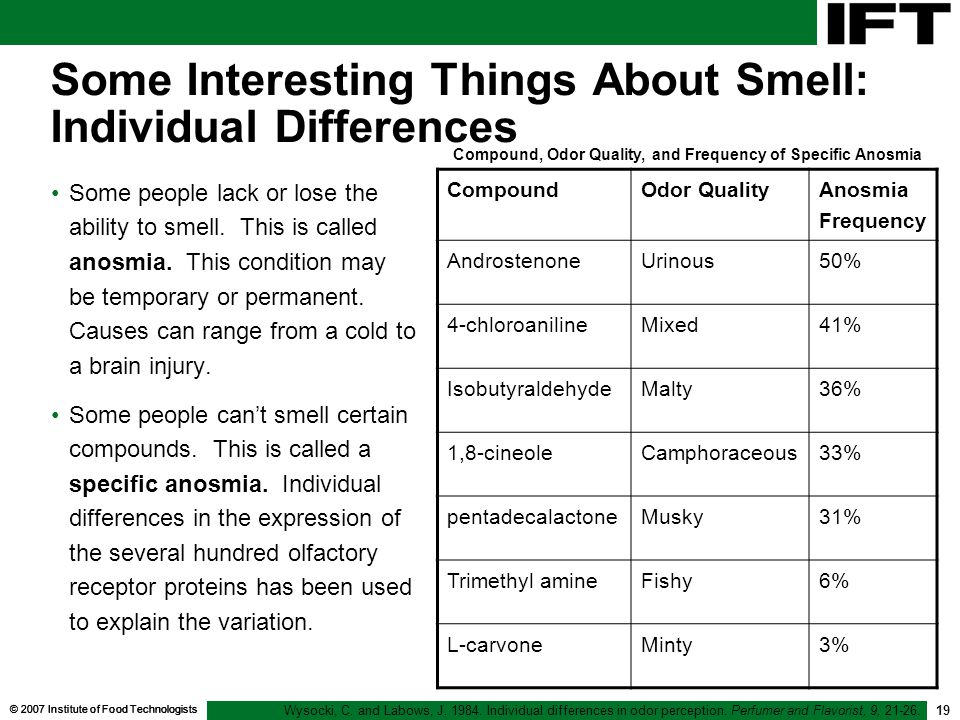 Some Interesting Things About Smell: Individual Differences