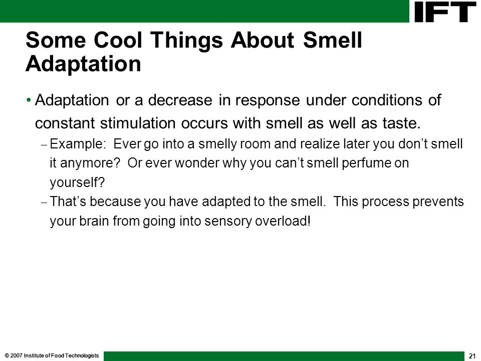 Some Cool Things About Smell Adaptation