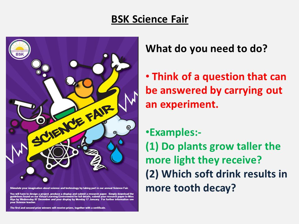 BSK Science Fair What do you need to do Think of a question that can be answered by carrying out an experiment.
