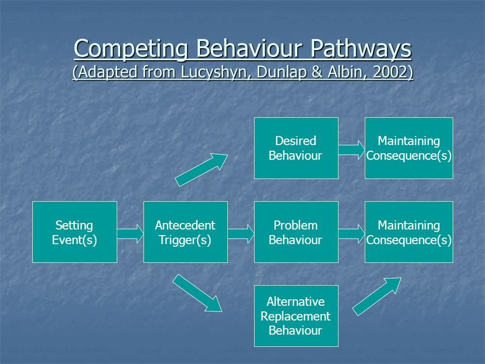 Competing Behaviour Pathways (Adapted from Lucyshyn, Dunlap & Albin, 2002)