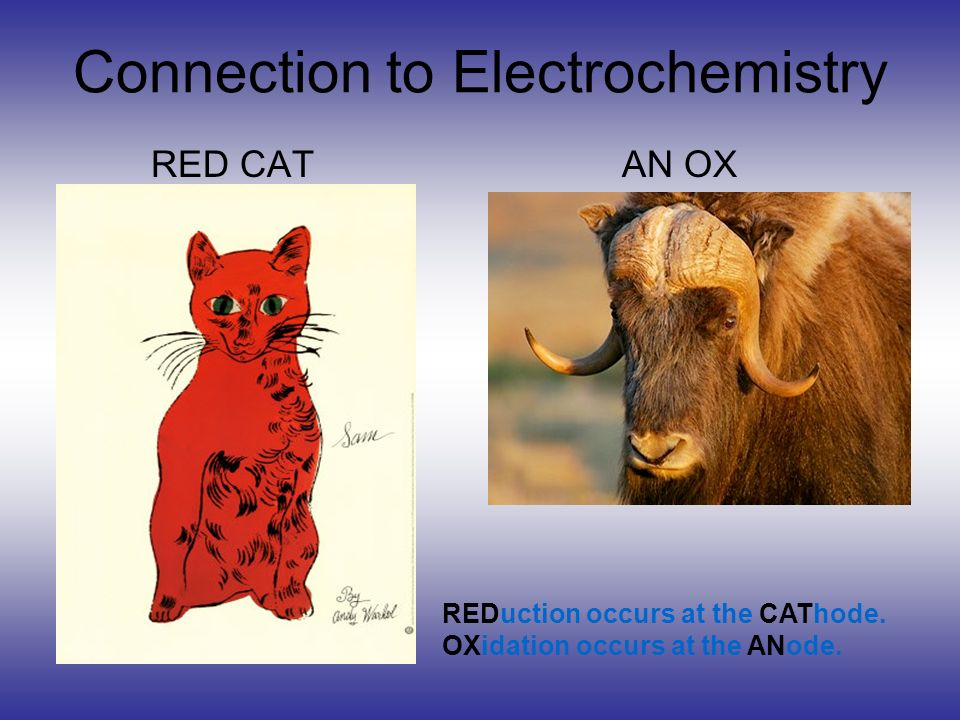 Connection to Electrochemistry