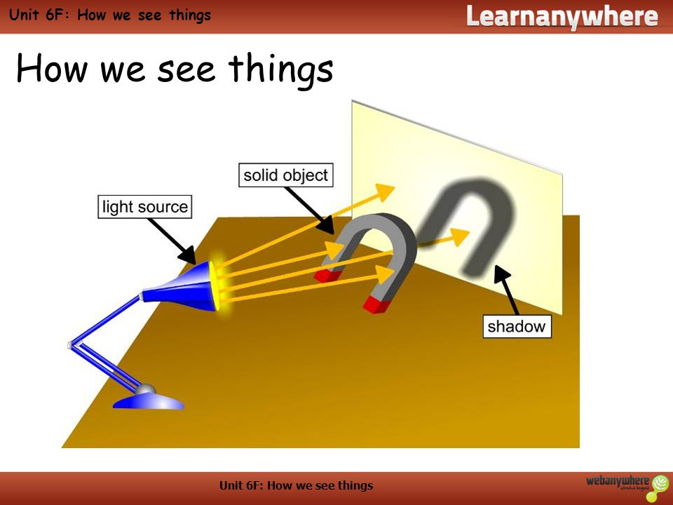 Unit 6F: How we see things