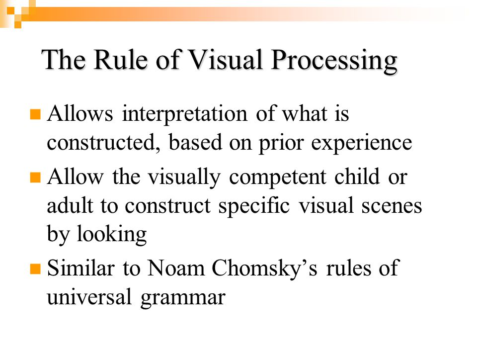 The Rule of Visual Processing