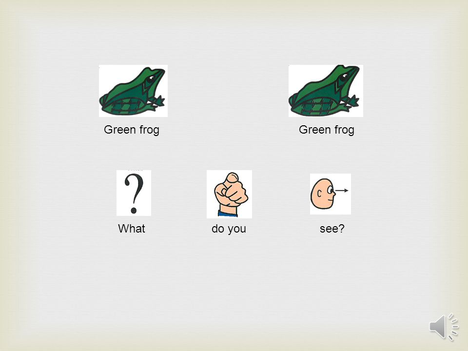 Green frog What do you see